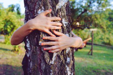 albero-abbraccio