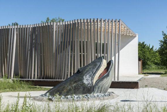 Parco_Stirone museo mare antico