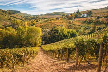 Piemonte capitale food