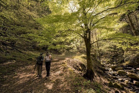 Foresta della Lama guide Aigae
