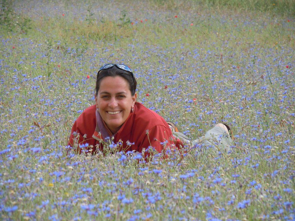 itinerario francescano rimini la verna aigae