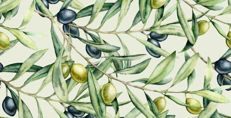 olive disegnate